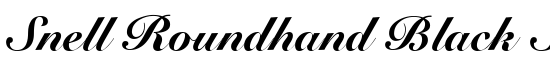 Snell Roundhand Black Script - Download Thousands of Free Fonts at FontZone.net